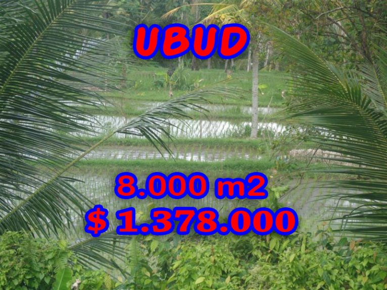 Amazing Property in Bali, Land for sale in Ubud Bali – TJUB277