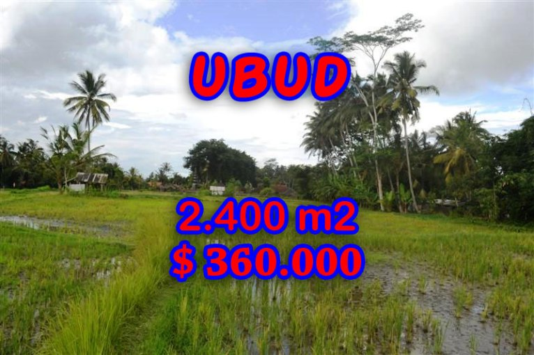 Incredible Property for sale in Bali, land for sale in Ubud Bali – 2.400 sqm @ $ 150