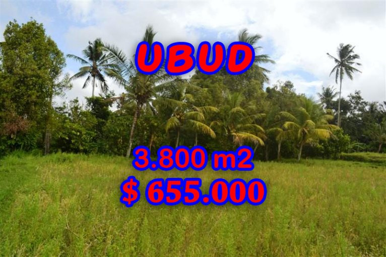 Property for sale in Ubud Bali, Interesting land for sale in Ubud Pejeng  – 3.800 sqm @ $ 172