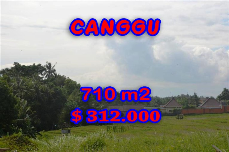 Amazing Land in Bali for sale, Exotic Rice fields view  in canggu Berawa – TJCG110