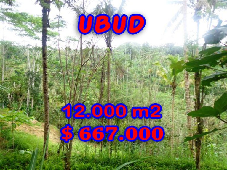 Bali Property for sale, Stunning land for sale in Ubud Bali  – 12,000 sqm @ $ 56