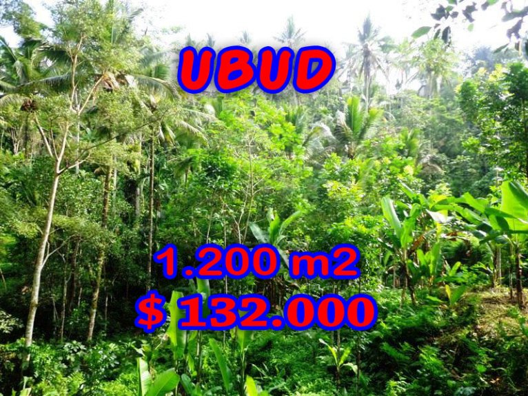 Stunning Property for sale in Bali, land for sale in Ubud Bali – TJUB265