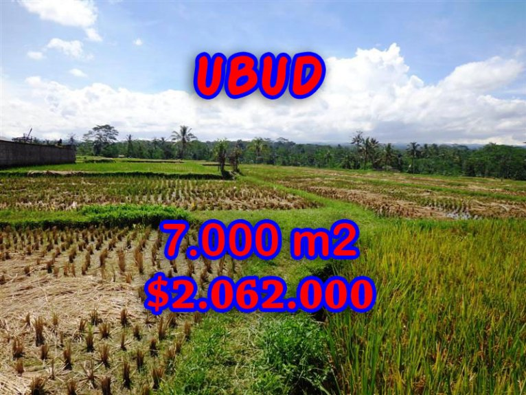 Fantastic Property for sale in Bali, land for sale in Ubud Bali – 7.000 sqm @ $ 294