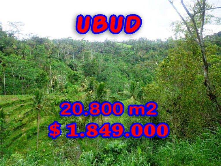 Land in Bali for sale, Fantastic river view in Ubud Tampak Siring – TJUB274