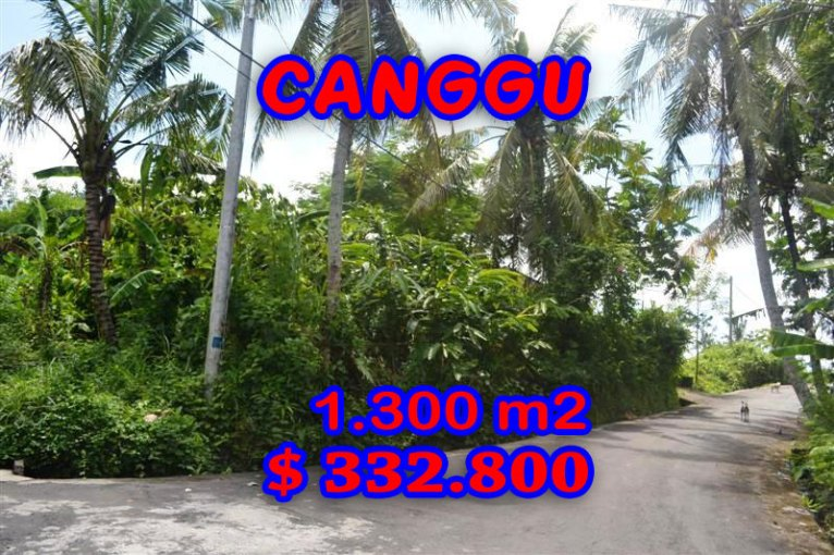 Land for sale in Bali, Spectacular Rice fields view  in Canggu Pererenan – TJCG096