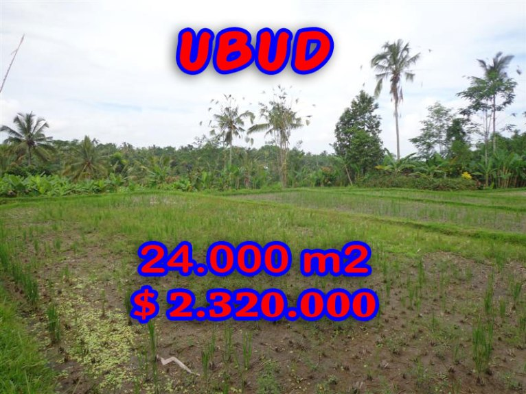 Land for sale in Bali, Fantastic view in Ubud Bali – TJUB262