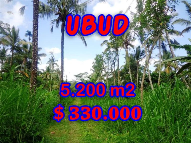 Land in Bali for sale, extraordinary view in Ubud Tegalalang – TJUB296