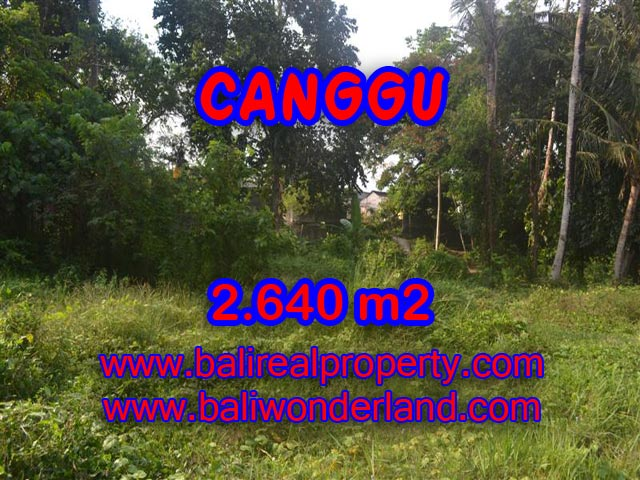 Stunning Land for sale in Bali, rice fields view in Canggu Bali – TJCG124