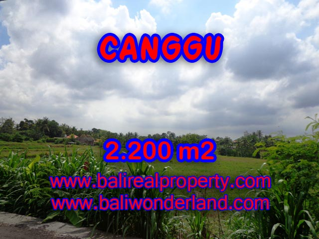 Land for sale in Bali, magnificent view Canggu Bali – TJCG125