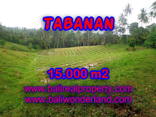 ExoticLand for sale in Tabanan Bali, Ocean View in TABANAN – TJTB067