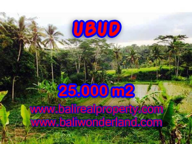 Land for sale in Bali, astonishing view in Central Ubud Bali – TJUB350