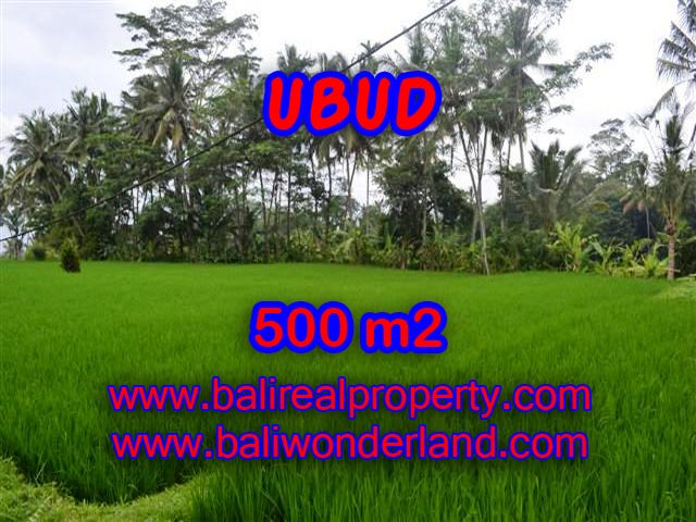 Land for sale in Ubud, Stunning view in Ubud Center Bali – TJUB364