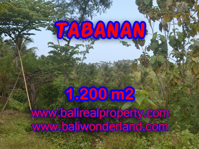 Land for sale in Tabanan, Stunning view in TABANAN BARAT Bali – TJTB072