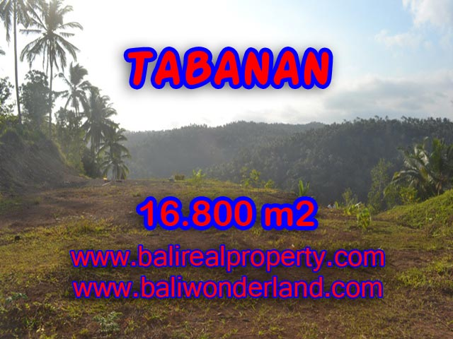 Land for sale in Bali, spectacular view in Tabanan Bali – TJTB075