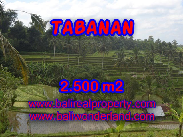 Land in Tabanan for sale, Stunning view in JATILUWIH TABANAN Bali – TJTB076