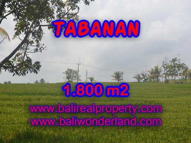 Land for sale in Bali, impressive view in SOKA TABANAN – TJTB083