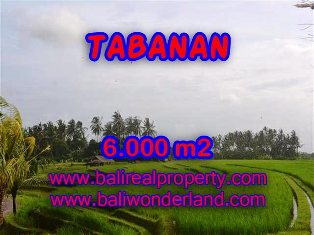 Exceptional Property in Bali, land for sale in Tabanan Bali – TJTB093