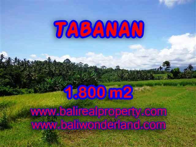 Land for sale in Tabanan, Stunning view in Tabanan Selemadeg Bali – TJTB106