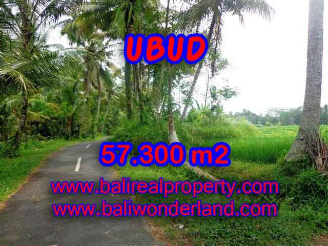 Land for sale in Ubud, Magnificent view in Ubud Tampak siring Bali – TJUB377
