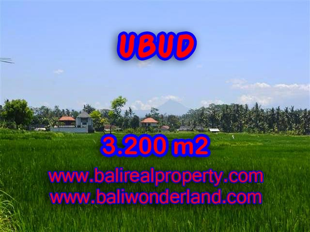 Magnificent Land for sale in Bali, ricefields and mountain view in Ubud Center Bali – TJUB385