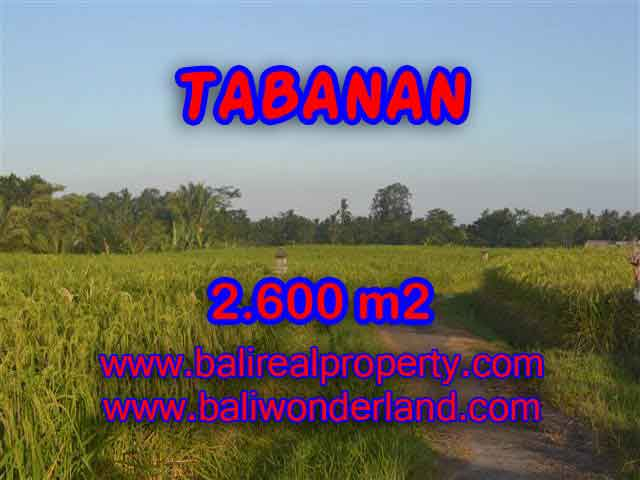 Stunning Land for sale in Bali, rice fields, mountain and ocean view in Tabanan Bali - TJTB129