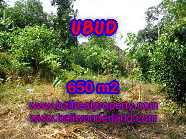Spectacular Property for sale in Bali, land for sale in Ubud Bali – TJUB417
