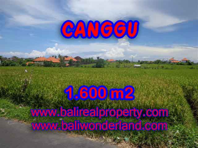 Land for sale in Canggu, Magnificent view in Canggu Cemagi Bali – TJCG139