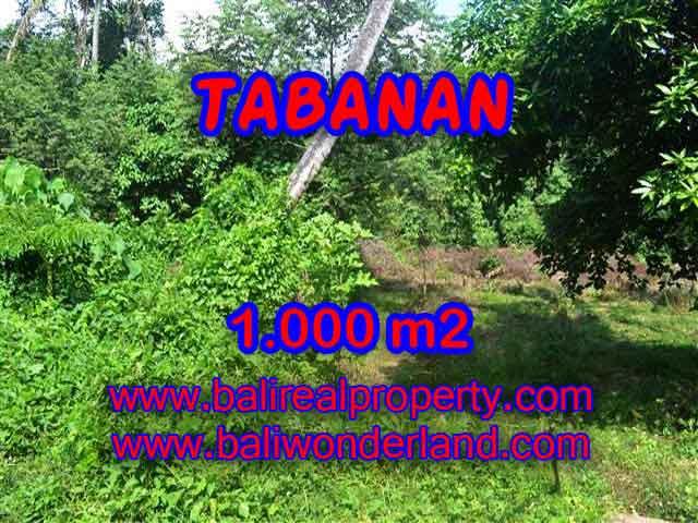 Extraordinary Land for sale in Tabanan Bali, river view  in Tabanan Kediri – TJTB114
