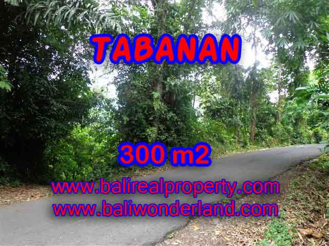 Land for sale in Bali, astonishing view in Tabanan Selemadeg Bali – TJTB116