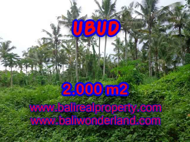 Land for sale in Bali, wonderful view in Ubud Bali – TJUB397