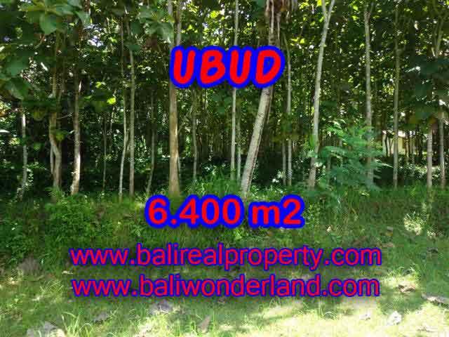 Astonishing Property for sale in Bali, LAND FOR SALE IN UBUD Bali – TJUB401
