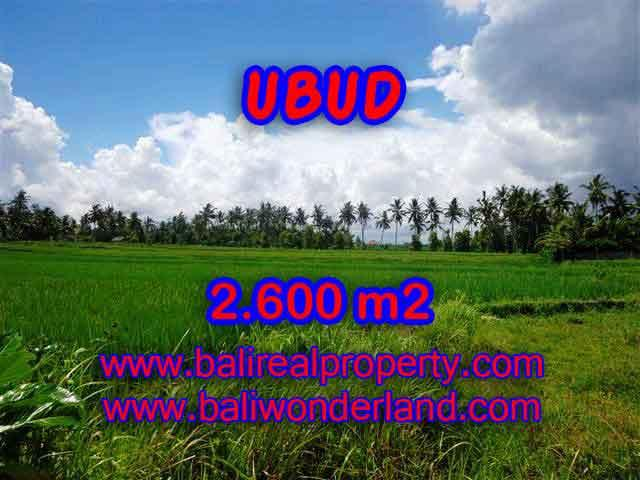 Land in Ubud for sale, Stunning view in Ubud Center Bali – TJUB374