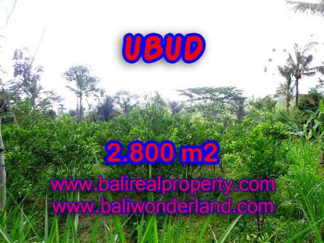 Interesting Land for sale in Ubud Bali, Green lush and mountain view in Ubud Tegalalang– TJUB375