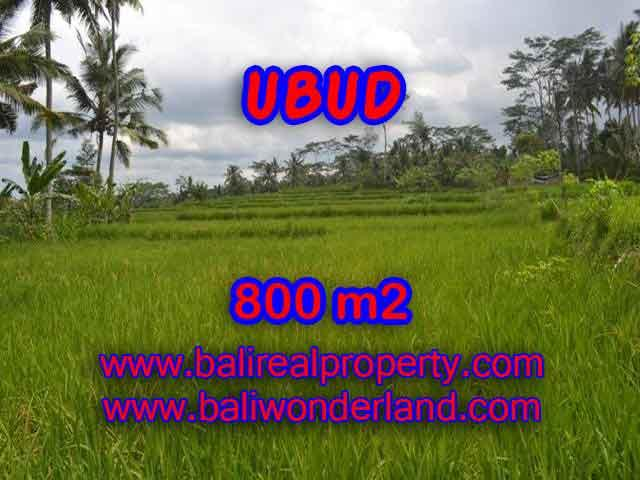 Land in Bali for sale, Stunning view in Ubud Bali – TJUB393