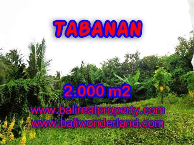 Fantastic Land for sale in Tabanan Bali, Commercial area in Tabanan Selemadeg– TJTB099