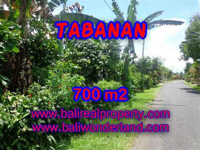 Excellent Property for sale in Bali, land for sale in Tabanan Bali  – TJTB090
