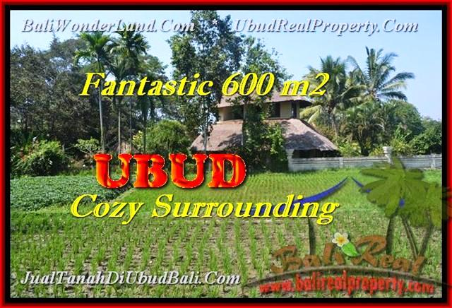 Magnificent 600 m2 LAND FOR SALE IN Ubud Pejeng BALI TJUB452