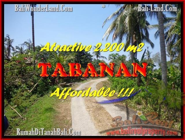 Beautiful 2.200 m2 LAND IN TABANAN BALI FOR SALE TJTB169