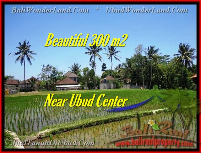 Magnificent PROPERTY 300 m2 LAND IN UBUD BALI FOR SALE TJUB436