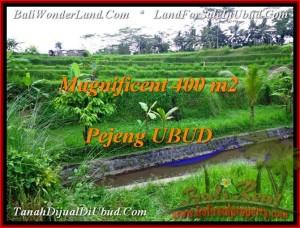 UBUD 400 m2 LAND FOR SALE TJUB483