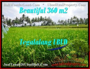 Beautiful PROPERTY LAND IN UBUD FOR SALE TJUB482