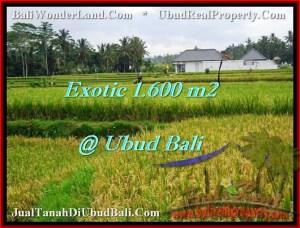 Exotic PROPERTY 1,600 m2 LAND SALE IN UBUD BALI TJUB487