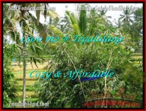 FOR SALE Magnificent PROPERTY 1,500 m2 LAND IN UBUD BALI TJUB489
