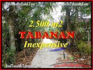 FOR SALE Exotic PROPERTY 2,500 m2 LAND IN TABANAN BALI TJTB160