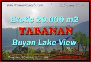Beautiful TABANAN BALI 20,000 m2 LAND FOR SALE TJTB163