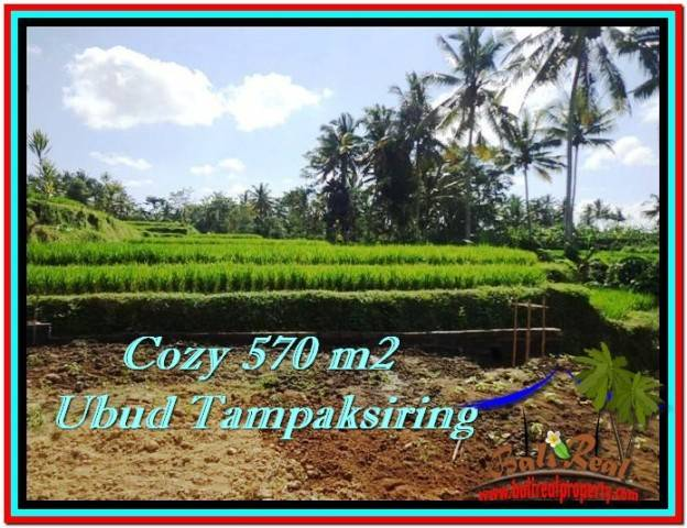 Affordable PROPERTY 570 m2 LAND SALE IN UBUD BALI TJUB511