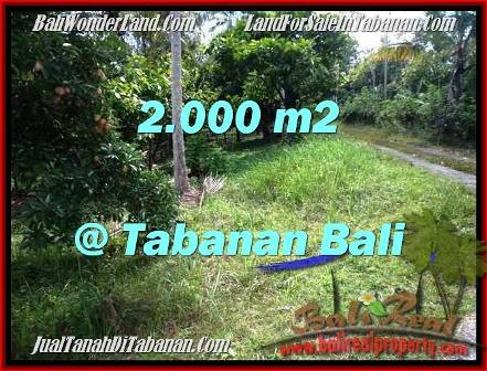 FOR SALE Magnificent PROPERTY 2,000 m2 LAND IN TABANAN BALI TJTB206