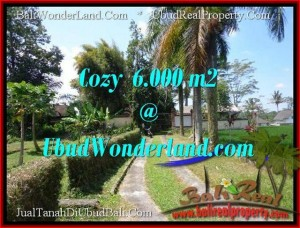 Exotic 6,000 m2 LAND FOR SALE IN UBUD BALI TJUB507