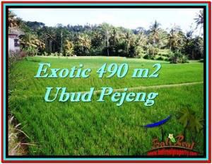 LAND IN Ubud Tampak Siring BALI FOR SALE TJUB512