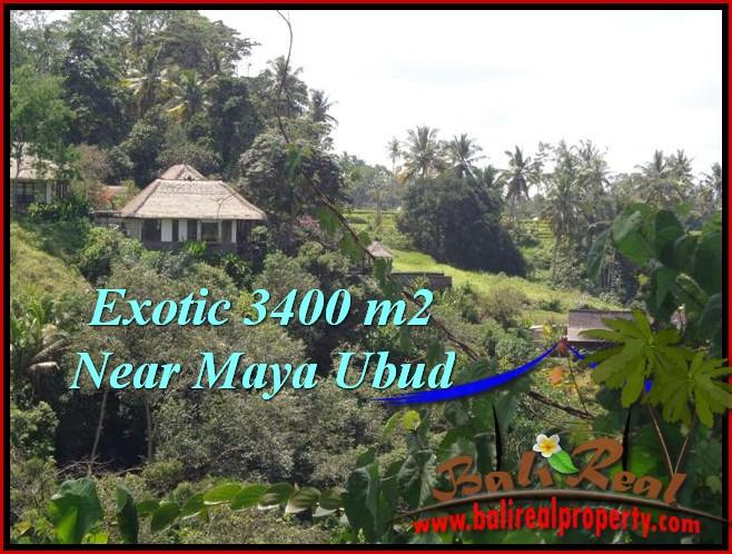 Beautiful PROPERTY 3,400 m2 LAND IN Ubud Tengkulak FOR SALE TJUB514